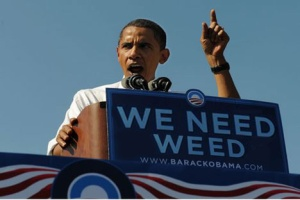 obama.weed_.weeneedweed