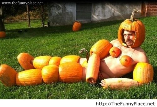 pumpkin-costume-Halloween-Costume-meme-lol-funny-pictures